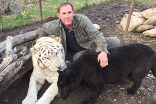 Safari Zoo Camp owner Brian Staples with Sammy the tiger and Owen the panther